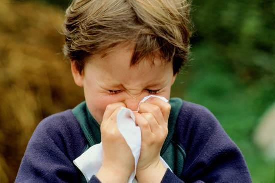 Allergic Rhinitis in Children: A Sneezing Dilemma